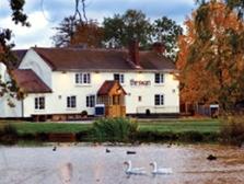 The Swan at Hanley Swan & Hanley  Swan Duck Pond