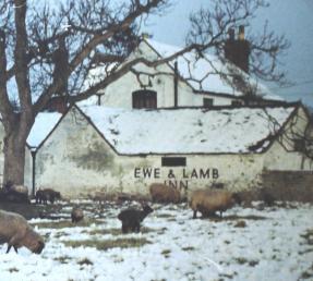 Ewe & Lamb Inn